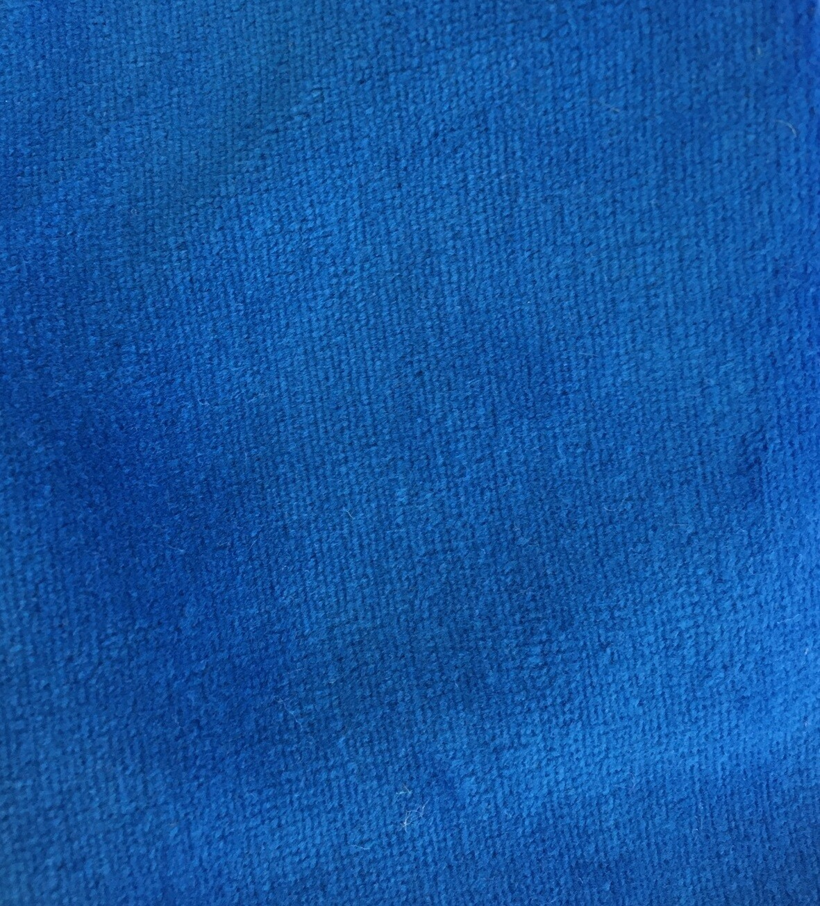 Cotton Plush Velour Fabric -- Blue
