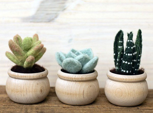 Succulent plants Needle Felting Kit