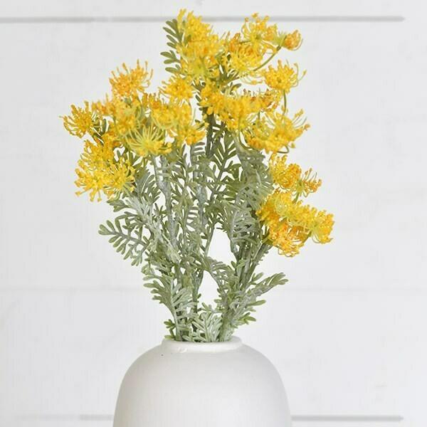 Yellow fennel flower
