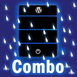 Maintenance & Hosting Combo Combo Pack
