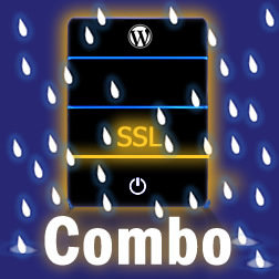 SSL Hosting & Maintenance Combo SSL Combo Pack