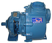 Centrifugal Pump with Pedestal Mount