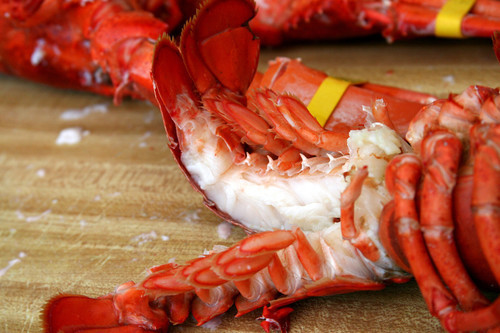 Cooked Lobster 00001