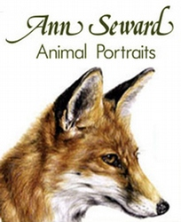 Ann Seward - Animal Portraits