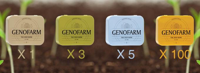 Genofarm Seeds