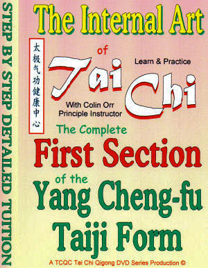 First Section of the Yang Cheng-fu DVD Detail: 0005