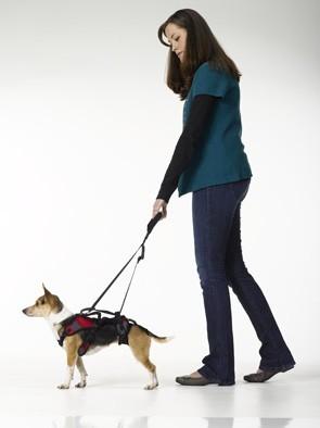 Walking Handle voor en achter vast