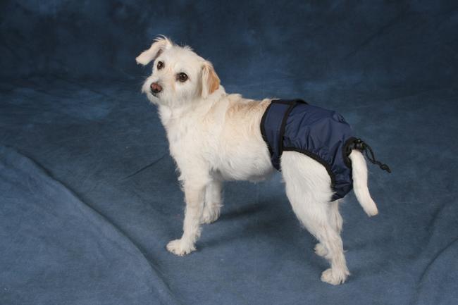 Snuggease Wasbare Hondenluier