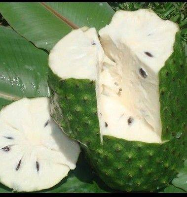 Fresh Guanabana (Soursop, Graviola) Fruit, n. 1 kg