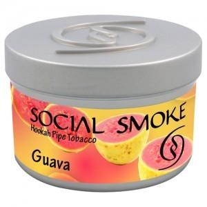 SOCIAL SMOKE: GUAVA 00969