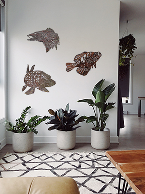 Fish Set on wall