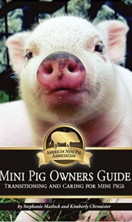 Mini Pig Owners Guide: Transitioning and Caring for Mini Pigs