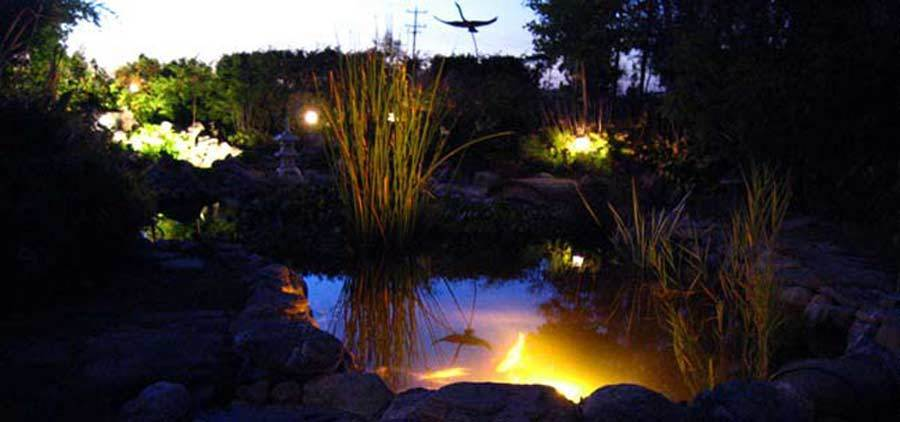 koi pond lighting ideas. led pond lighting koi ideas e