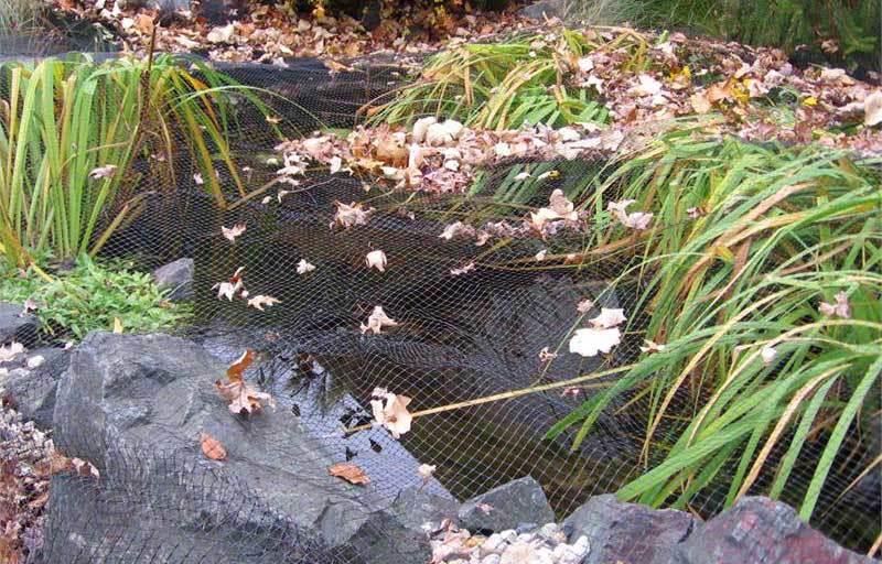 Leaf and Predator Pond Netting