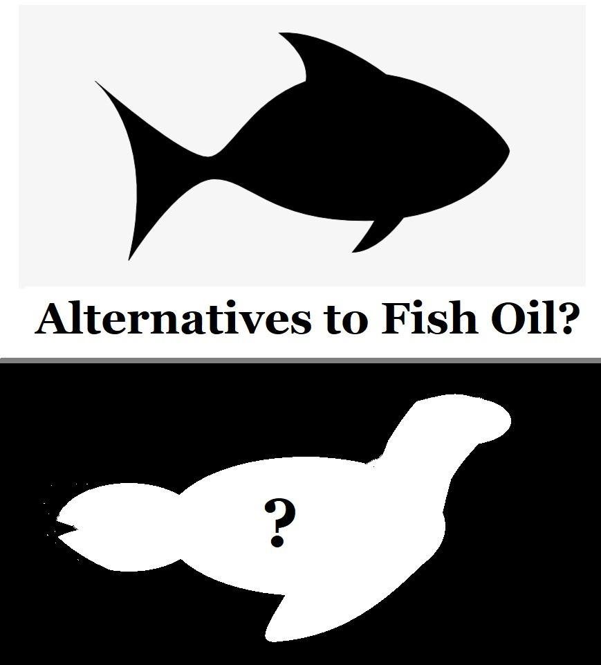 Are there alternatives to fish oil to get omega-3?