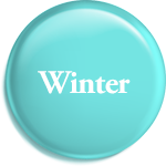 Winter Cookie Gifts
