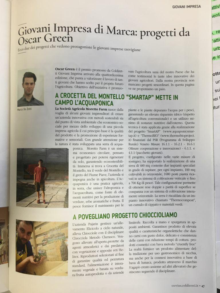 Giovani Impresa di Marca: progetti da Oscar Green