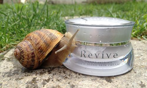 Revive Snails