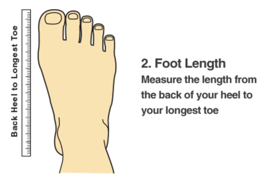 4be087cc2296 ... bare feet and mark with a pen the tip of the toe and the heel on the  paper. Then measure between the two marks on the paper with a ruler in cm)