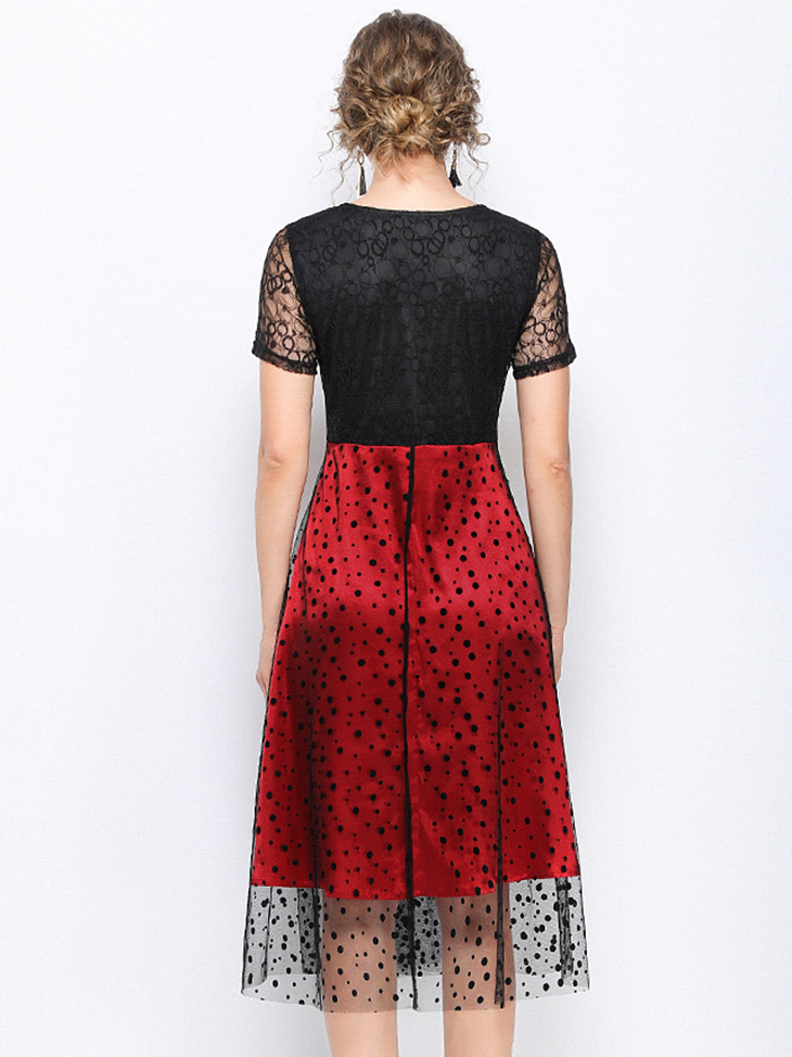 Two-Tone Lace Cocktail Dress