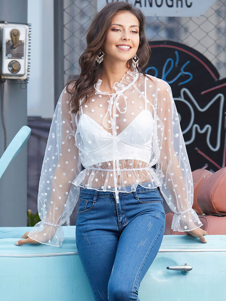 Sheer top with Long Sleeves