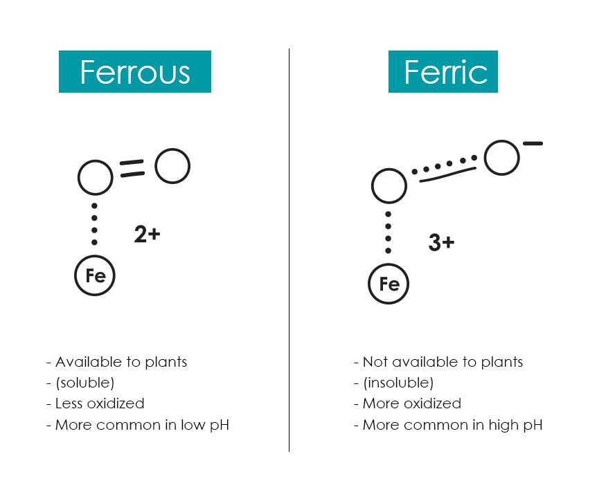 Ferrous_Ferric