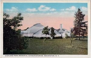 Early 20th Century Postcard of Lamberton Conservatory