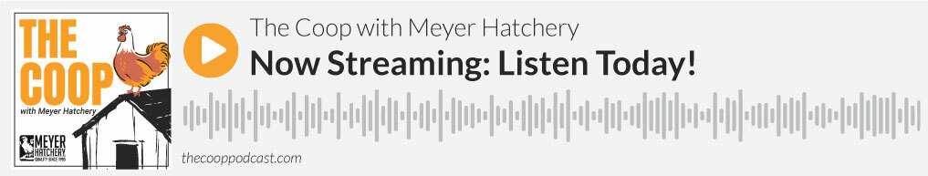 Episode 29: The Livestock Conservancy, The Coop Podcast by Meyer Hatchery