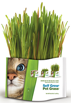 Pet Greens By Bell Rock Growers Wheat Grass Self Grow
