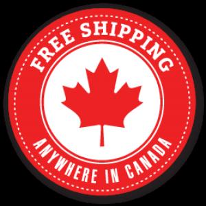 Buy Hand Sanitizers in Bulk in Canada.  Now in Stock.