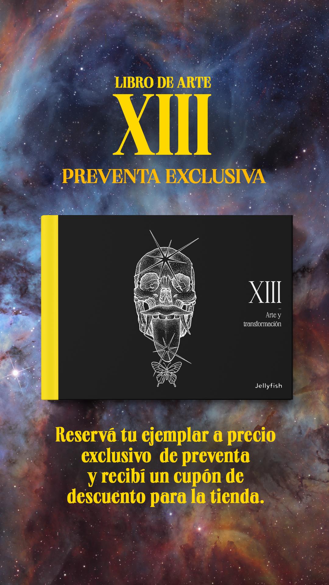 libro de arte XIII arte y transformacion