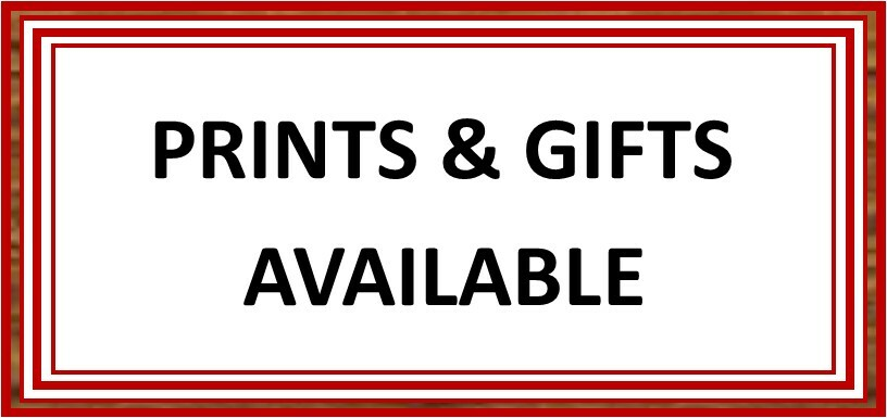 Prints & Gifts Available