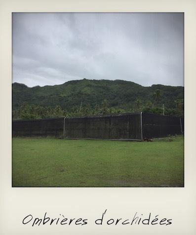 Ombrières à Raiatea