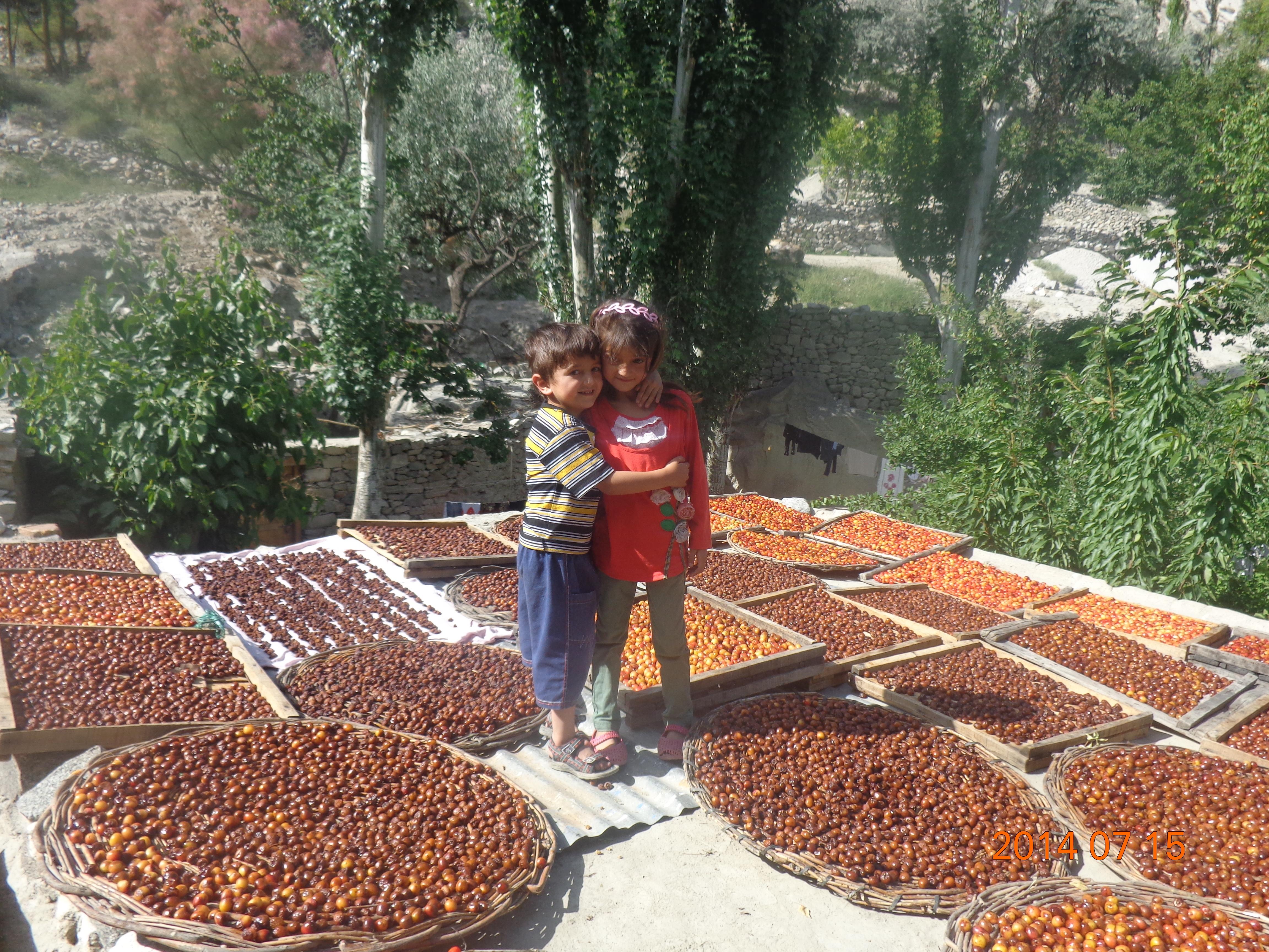 Hunza_family_farmers_jpg
