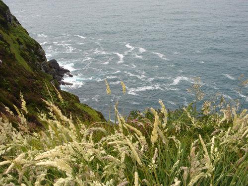 Dingle Peninsula. Co Kerry. Ireland