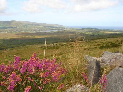 Dingle Peninsula. Co. Kerry Ireland