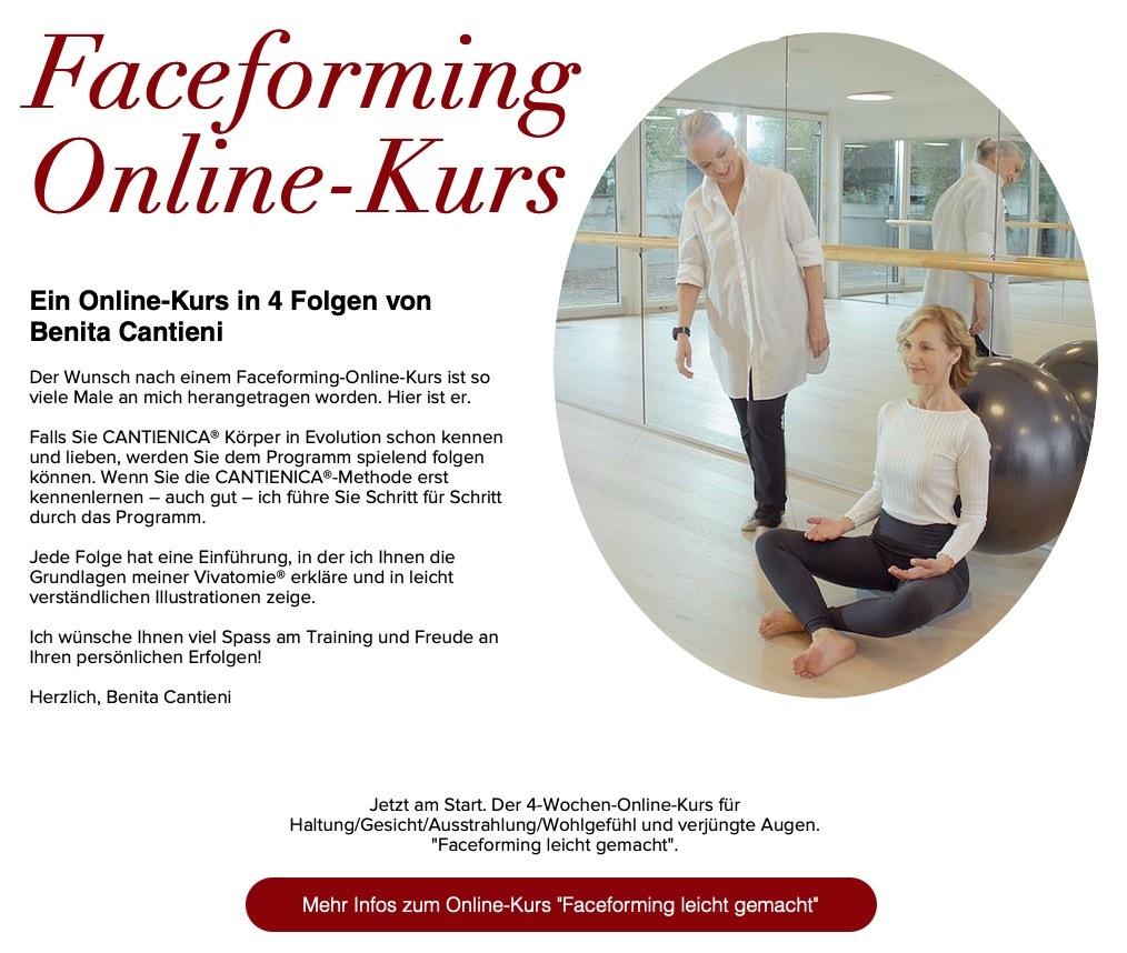 Onlinekurs Faceforming
