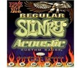 Ernie Ball 2146 Acoustic Regular Slinky String Set (12, 16, 24, 32, 40, 54)