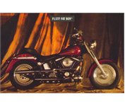 Need A Wiring Diagram For A 94 Harley Fatboy Fixya