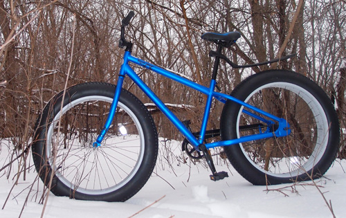 We Bought A Fat Bike From Walmart And Took It For A Test Ride