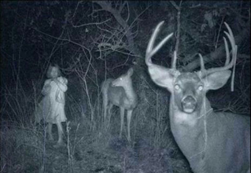 These Spooky Trail Cam Photos Will Send Shivers Down Your -6272