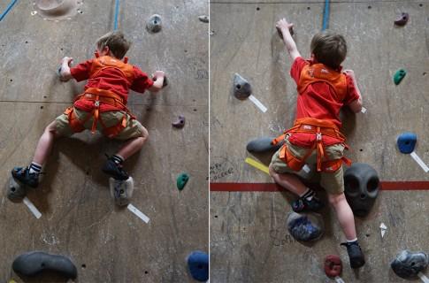 petzl kid climbing harness