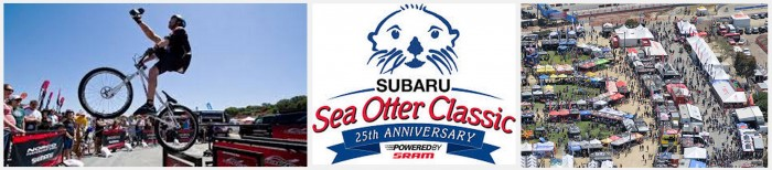 sea-otter-2015