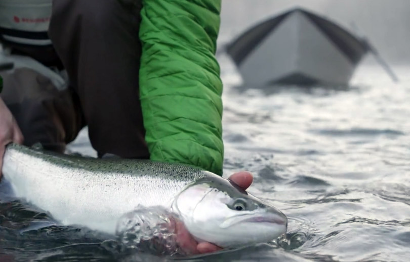 Steelhead fishing the pacific northwest for Steelhead fishing gear
