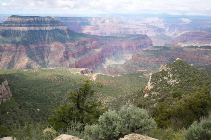 Grand Canyon 100 (15)
