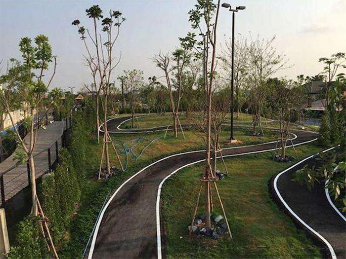 bike-park-thailand