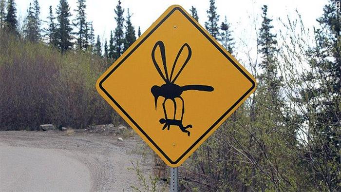 bug-sign
