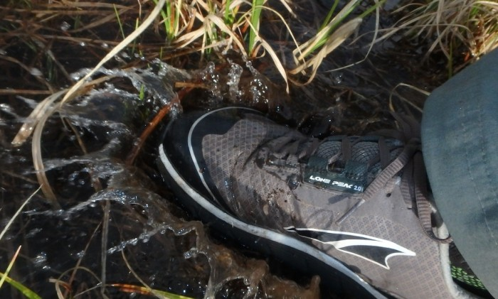 waterproof altra shoe