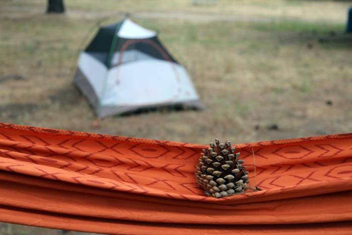 hammock and tent