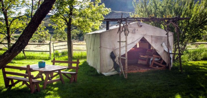 Cody Wyoming Camp Spot